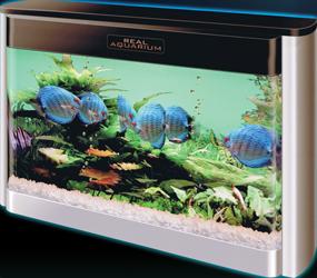バーチャル熱帯魚 REAL AQUARIUM